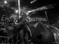 00sectorial06
