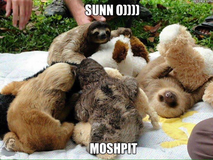 sunno moshpit