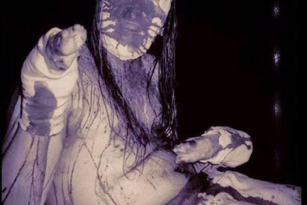 тест Vanhelga Psychonaut 4