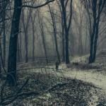 Финно-угорское «Мракобесие» от группы SECOND TO SUN. И еще один прошлогодний альбом в ваш чеклист