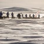 Joakim Brodén пытается выиграть участие в полярной экспедиции. И вы тоже можете попробовать!
